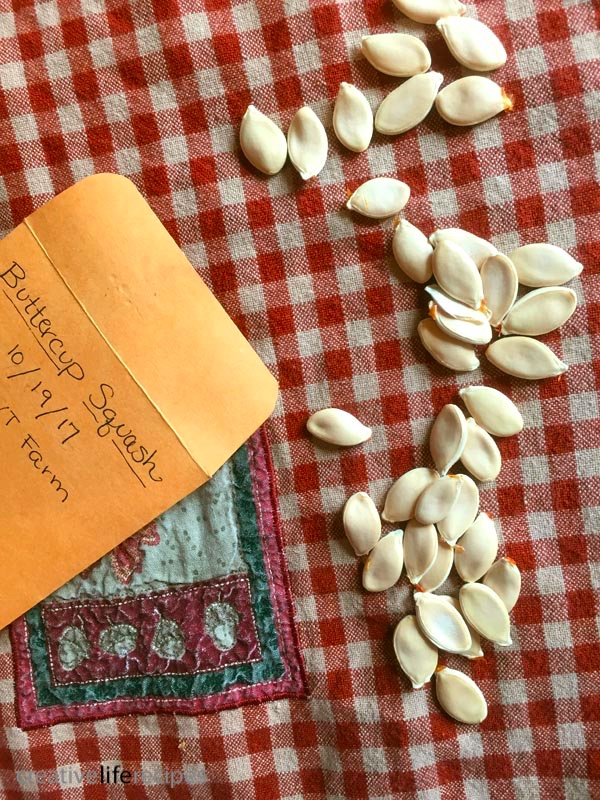 Dry Your Own Seeds Labeled Envelope Creative Life Recipes